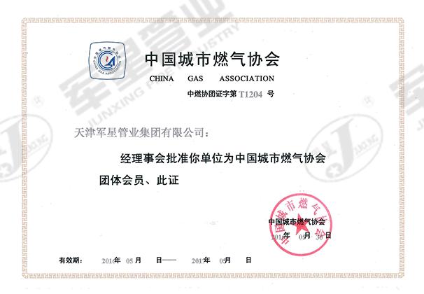 中国城市燃气协会会员
