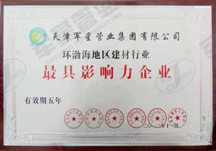 环渤海地区建材行业最具影响力企业
