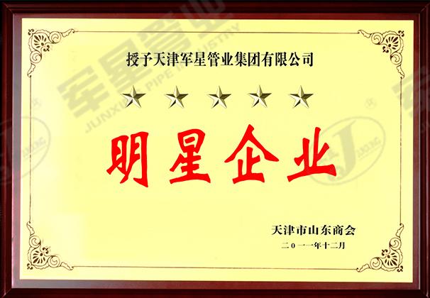 天津市山东商会明星企业